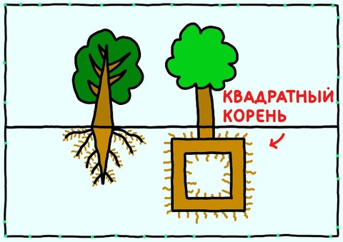 Калькулятор корней онлайн с решением со степенями